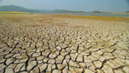 Stock Video Footage of Drought disaster.