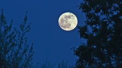 Full moon rising in the early evening sky - 4K Ultra HD time lapse Stock Footage