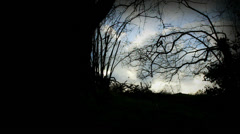 Looking out of sinister wood (dolly) Stock Footage