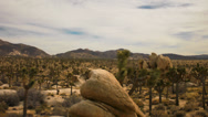 Stock Video Footage of Joshua Tree Desert Cloudscape Time Lapse