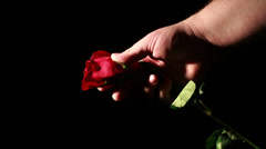 Dying Love, Rose Being Crashed in Hand Stock Footage