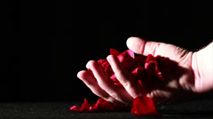 Dying Love, Rose Petals on Ground Being Crushed, Slow Motion - stock footage