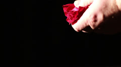 Dying Love, Rose Petals on Ground Stock Footage