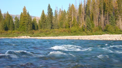 Flathead River near Glacier National Park Stock Footage