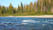 Stock Video Footage of Flathead River near Glacier National Park