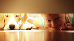 Laughing little boy with his best friend beagle dog under the bed Stock Footage
