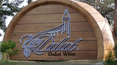 Da Lat Wine Icon Stock Footage