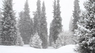 Stock Video Footage of snowfall 3