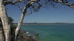 Tree View from the coastal walk Noosa National Park, Queensland, Australia Stock Footage