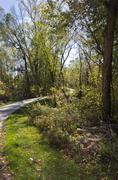 Bike Path - stock photo
