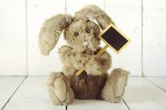 Teddy bear like home made bunny rabbit on wooden white background Stock Photos