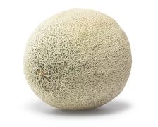 Cantaloupe - stock photo