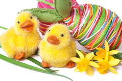 Ducklings with easter eggs and narcissus Stock Photos