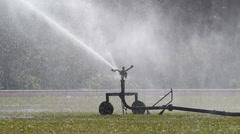 Sprinkler head watering the grass in sport field. Stock Footage