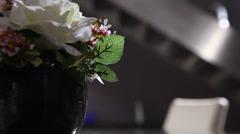 Closeup shot of flowers Stock Footage