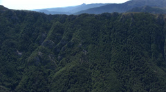 Aerial corsica mountains forest Stock Footage