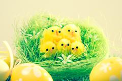 easter chick and painted easter eggs - stock photo
