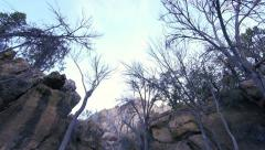A Spooky Looking Desert Grotto in a Wilderness Setting with Tilt Down Action Stock Footage