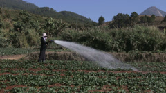 Irrigating Fields by Hand in Vietnam Stock Footage