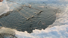 Pike caught with winter fishing nets Stock Footage