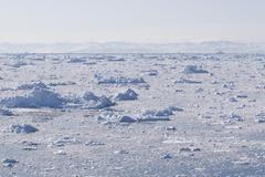 Ice fjord - stock photo
