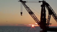 Stock Video Footage of 0247 Crane at the seashore