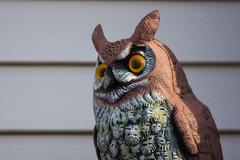 sculpture of a great horned owl - stock photo