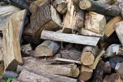 pile of uncut firewood - stock photo