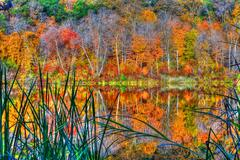 reflections of autumn in high dynamic range - stock photo