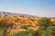 Stock Photo of arabian desert