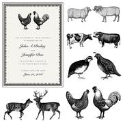 Vector male and female animal vintage wedding invite set Stock Illustration
