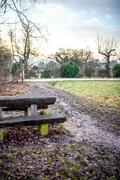 Night Pictures - Bench in a Park Stock Photos