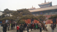 Stock Video Footage of Beijing Lama Temple Yonghegong 08