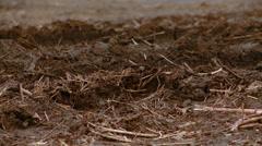 Farm land Mud Stock Footage