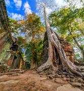 Ancient khmer architecture. ta prohm temple, angkor wat, siem reap, cambodia Stock Photos
