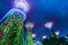 Futuristic view of amazing illumination at garden by the bay in singapore Stock Photos