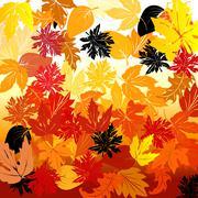 Autumn - stock illustration