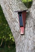 Bird house Stock Photos