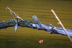 fishing frustration - stock photo