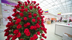 Two big bouquets at XIX International Flower Show Stock Footage