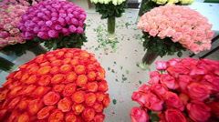 Beatiful  bouquet of roses in vases with water on the floor Stock Footage