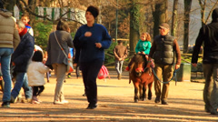 People in the park - stock footage