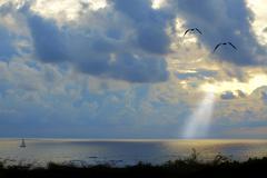 Sunset Aruba - stock photo