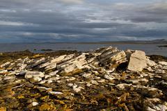Stock Photo of coastline falkland islands