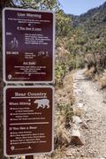 Mountain Lion Varoitus Kuvituskuvat