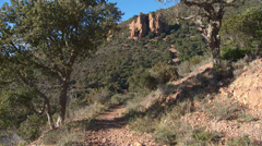 Massif de L'Esterel Cork Trees with Pinnacles Stock Footage