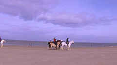 Winter horse ride on the beach. Stock Footage