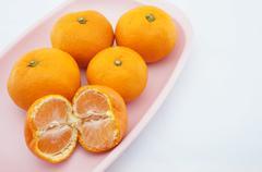 eating orange on pink tray - stock photo