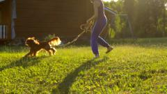 Girl and dog running in the garden in the meadow, sun rays, playing Stock Footage