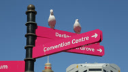 Stock Video Footage of seagulls, tourist signpost, cockle bay wharf, darling harbour, Sydney